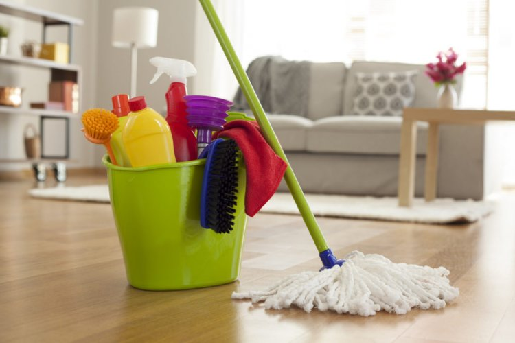 Professional services company for home cleaning services